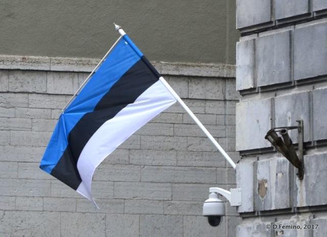 Estonian flag (Tallin, Estonia, 2017)