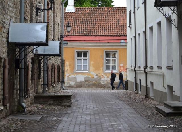 Street in the old town (Tallin, Estonia, 2017)