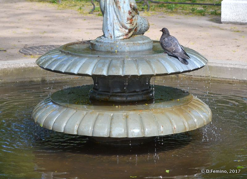 Fountain in Vvedenskiy Sad (Saint Petersburg, Russia, 2017)
