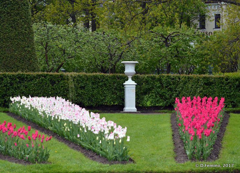 Flower bed in upper gardens (Peterhof, Russia, 2017)