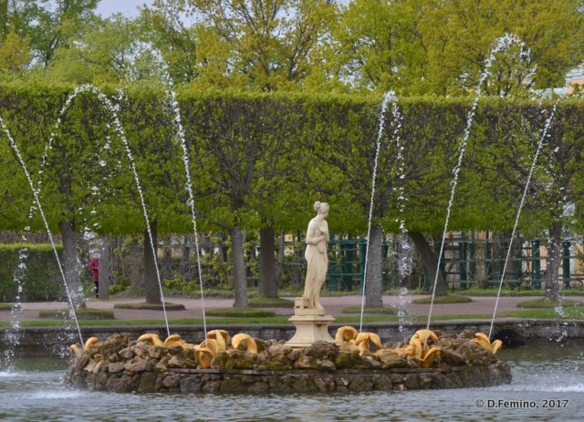 Fountain (Peterhof, Russia, 2017)