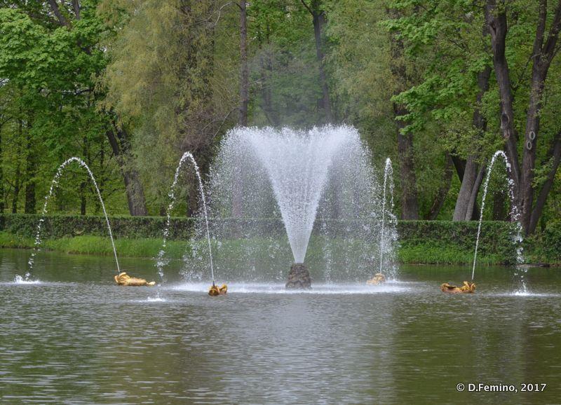 Fountain spray (Peterhof, Russia, 2017)