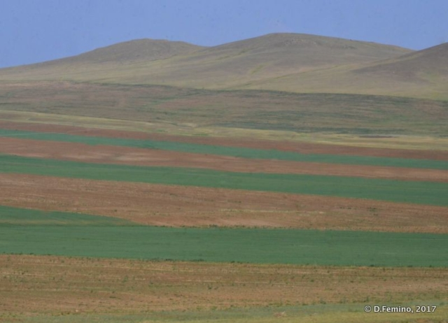 Fields by the window (Mongolia, 2017)