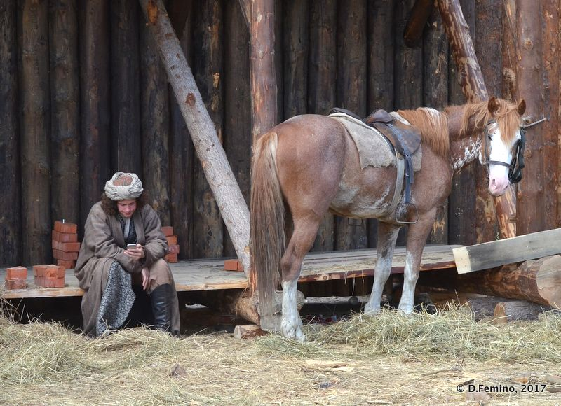Looking after the horse (Tobolsk', Russia, 2017)