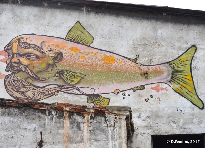 Fish murales (Khuzhir, Russia, 2017)