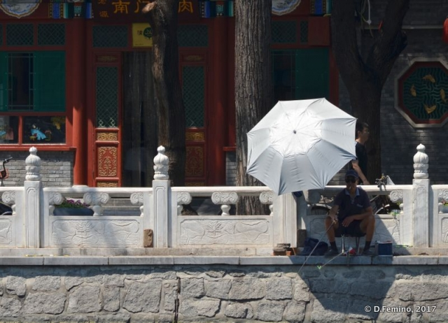 Umbrella by Qianhai lake (Beijing, China, 2017)