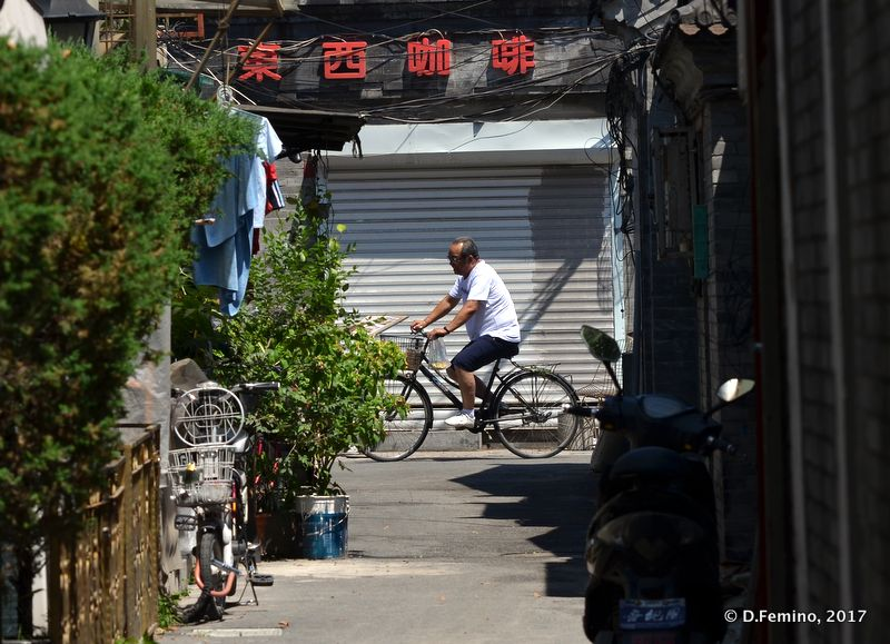 Cycling in a Hutong (Beijing, China, 2017)