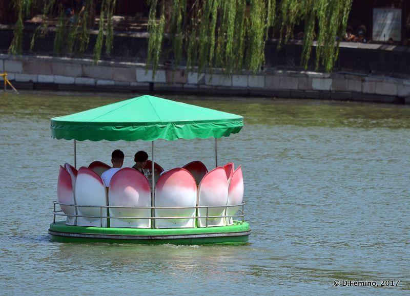 Lotus flower boat (Beijing, China, 2017)