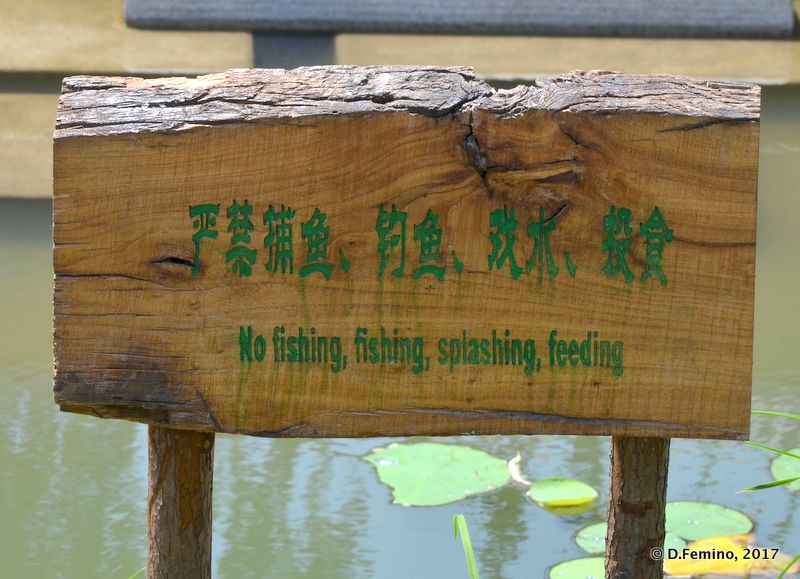 No fishing and no fishing (Beijing, China, 2017)