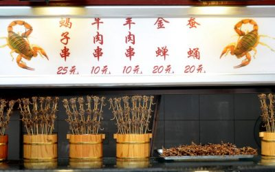Scorpion snack stall in Wangfujing market