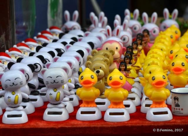 Ducks and cats (Tianjin, China, 2017)
