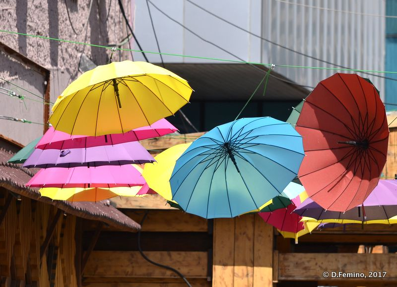 Umbrellas (Ulaanbaatar, Mongolia, 2017)