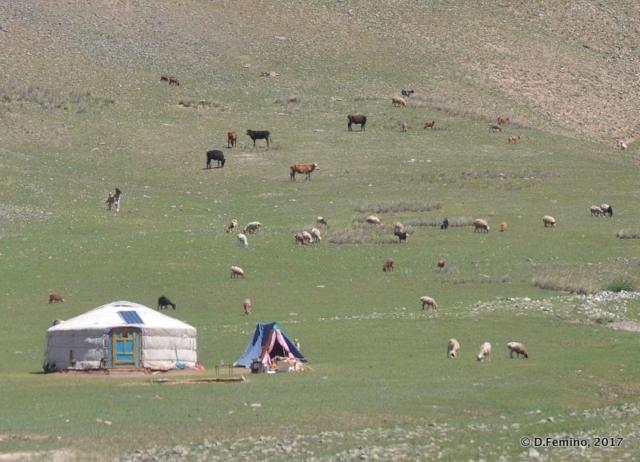 Nomadic tent or Ger (Terelj Park, Mongolia, 2017)