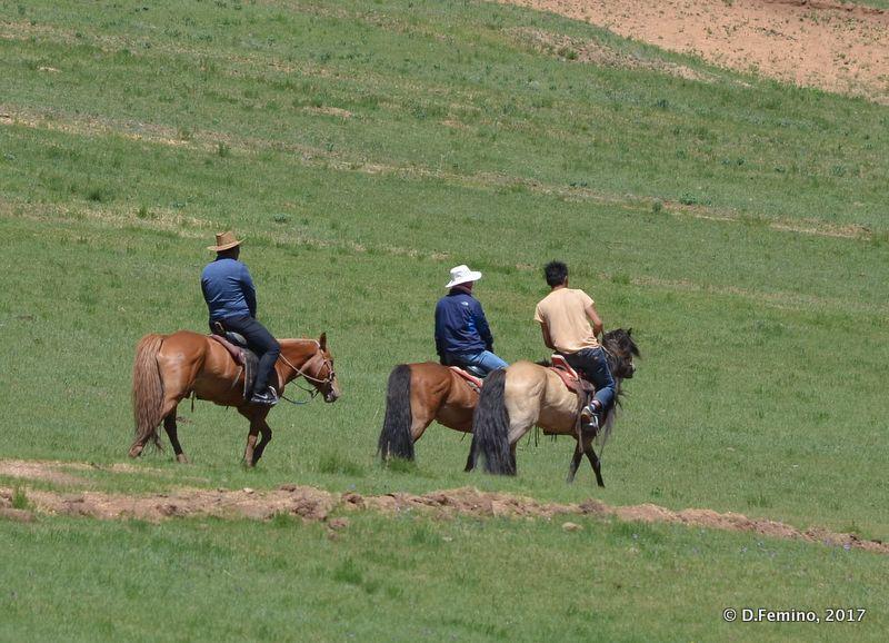 Mongolian cowboys (Terelj Park, Mongolia, 2017)
