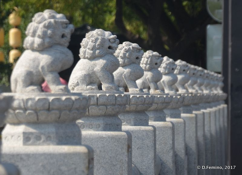 Sequence of small lions (Xi'an, China, 2017)