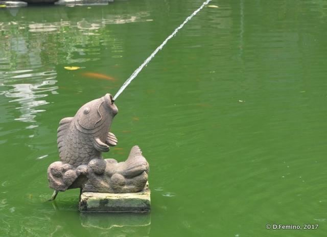 Spitting fish (Shanghai, China 2017)