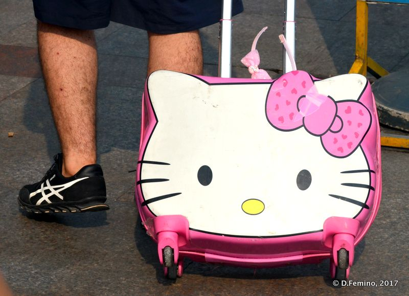 Hairy legs and hello kitty suitcase (Shanghai, China 2017)