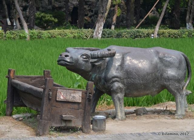 Buffalo statue (Zhujiajiao, China, 2017)