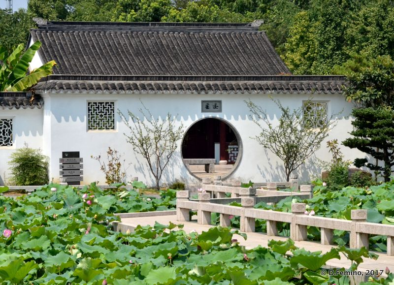 House in Sanjiaoju Wetland Park (Suzhou, China, 2017)
