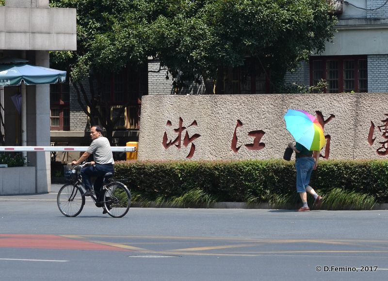 Street view (Hangzhou, China, 2017)