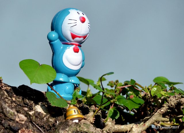 Doraemon, king of Tai-O (Hong-Kong, 2017)