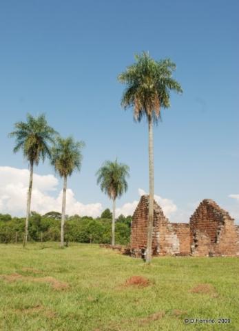 Palms and ruins (La Santísima Trinidad de Paraná, Paraguay, 2009)