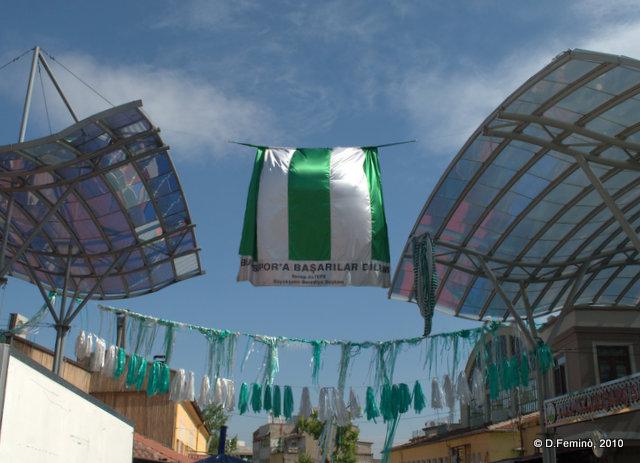 Celebrating victory (Bursa, Turkey, 2010)