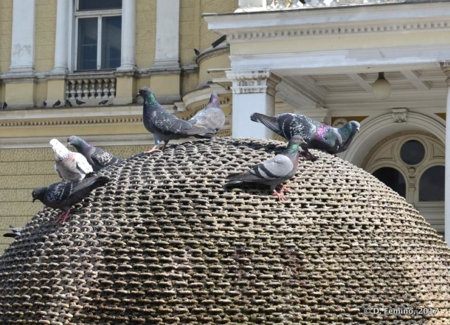 Pigeons in front of the theatre (Rijeka, Croatia, 2017)