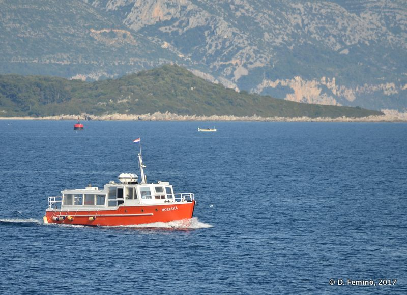 Boat approaching harbour (Korčula, Croatia, 2017)