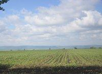 Landscape in Moldova